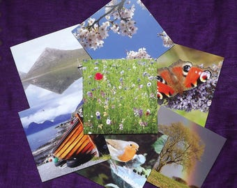 Set of 4, 6 or 8 blank greetings cards of your choice