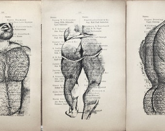 Gay erotic poster  / muscular hairy mens nude    / 3 pages printing Antique 1914  German book  decor interior picture ART erotic