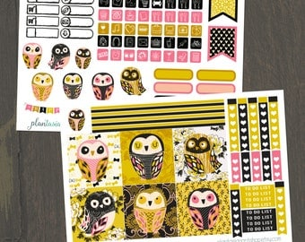 Owlery Kit, Mini Happy Planner, 2 Page Planner Sticker Kit, Weekly Kit, Checklists, Icons, Owl Stickers, Mini Stickers, BuJo, MAMBI