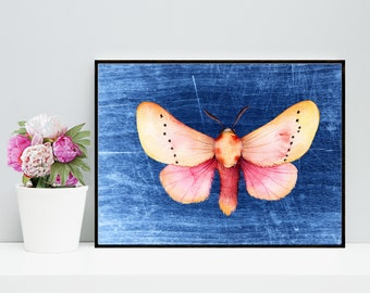 Pink Moth Art - Butterfly Artwork, Moth Art Print, Moth Wall Decor, Digital Moth Download, Digital Moth Art, Pink Insect Art, 3d Art