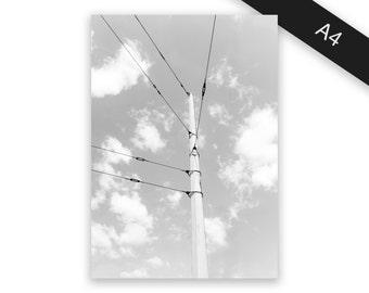 Mast - art print/photo print A4