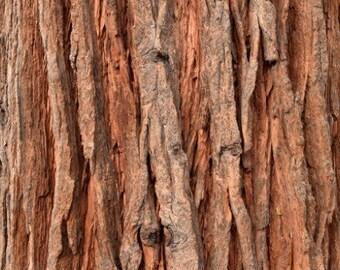 Incense Cedar Bark