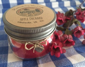 Apple Orchard Soy Wax Candle Handmade Natural Eco-Friendly Mason Jar 4oz Highly Scented Homestead Farm Gift Primitive Country Home Decor