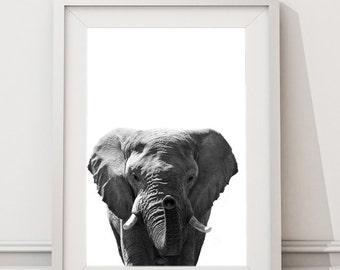 Black and White Elephant, Printable Art, Instant Large Art Print, Modern Minimalist  African Animals Elephant Photo Nursery Safari Art