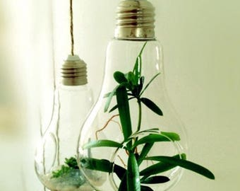 Glass Bulb Lamp Shape Flower Water Plant Hanging Vase Hydroponic Container Pot Home Office Wedding Decor