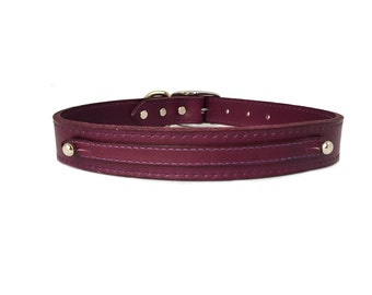 "22"" Simple and Elegant Leather Pet Collar"