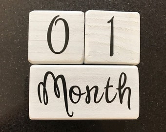 Baby Month Milestone Blocks, Month Blocks, Baby Picture Props, Newborn Photo Shoot Prop