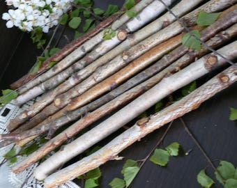 10 white Birch Branches, Birch Logs, Birch Wood, home decor, wedding decoration, branches, birch.