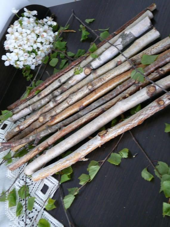 10 rami di betulla bianca tronchi di betulla legno di for Progetti di costruzione domestica