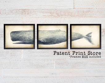 Sperm Whale Art Print. Whale Print. Sperm Whale Triptych. Sperm Whale Wall Art. Nautical Decor. Coastal Wall Art. Nautical Nursery.  228