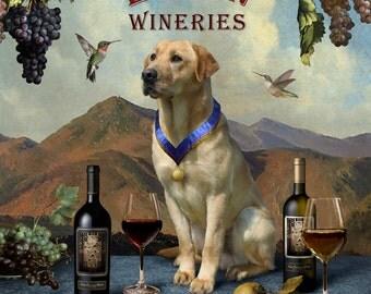Elgin Wineries I