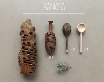 Hand turned banksia vase