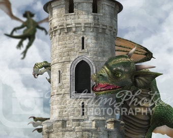 Tower and dragons