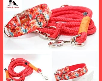 "Set: dog collar ""Colorful Flowers"" with matching Tauleine"