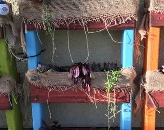 Vertical succulent garden box