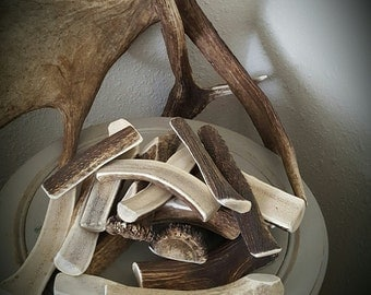 Elk Antler Dog Chew Split (exposed marrow) 26.99 per pound