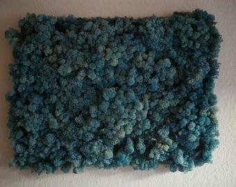 Moss Panel, Moss Painting, Blue Moss, Icelandic Reindeer Moss, Moss Art Work, Moss Wall Art
