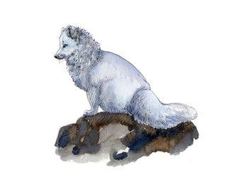 fox art print, fox, fox artwork, fox gift idea, fox art, fox decor, fox wall art, fox nursery, wildlife art, art print, saltwatercolors