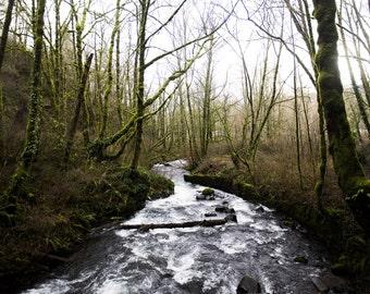 Nature Photography, Wall art, Digital download, nature photo, river, Landscape Photography
