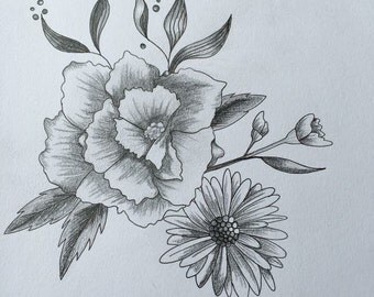 Daisy and roses Graphite drawing