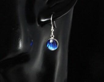 Real Blue Morpho butterfly Sterling Silver Drop Earrings