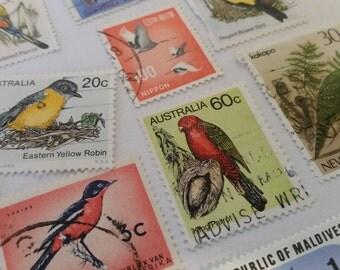 BIRD Postage Stamps/World Wide Bird Stamps
