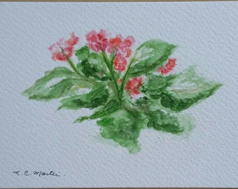 Pink Blossoms.  Watercolour postcard.