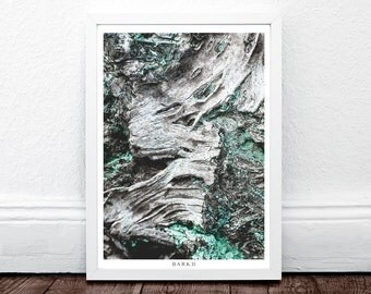 BARK II, Moss, Modern Large Print, Wall Prints Art Modern, Large Minimalist Art, Wall Print, Nature Wall Poster, Fine Art