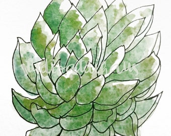 Succulent Watercolor and Pen and Ink Printable