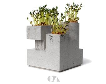 Concrete Planter for tiny plants