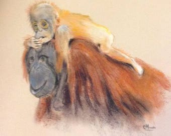 Orangutan and Child  - Mounted but not framed