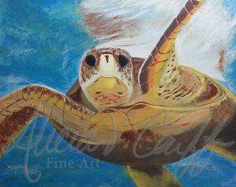Giclée Print - Sea Turtle