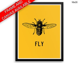 Fly Prints  Fly Canvas Wall Art Fly Framed Print Fly Wall Art Canvas Fly Home Art Fly Home Print Fly insect