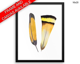Feathers Prints  Feathers Canvas Wall Art Feathers Framed Print Feathers Wall Art Canvas Feathers Bedroom Art Feathers Bedroom Print