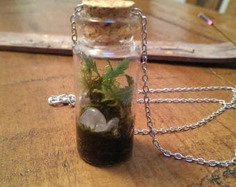 Bottled nature ecosystem necklace