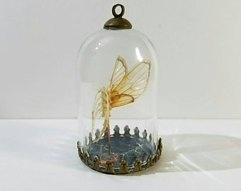 Fairy Skeleton Curio in a  Glass Dome Pendant