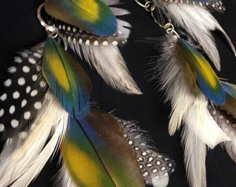 Beautiful macaw feather earrings, long unique chain rainbow macaw feather with grey and white, cruelty free feathers #CE1