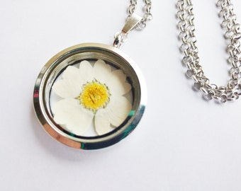 daisy necklace - silver flower necklace - silver locket - pressed flower necklace -