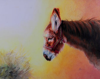 Christmas Donkey - Fine Art Print