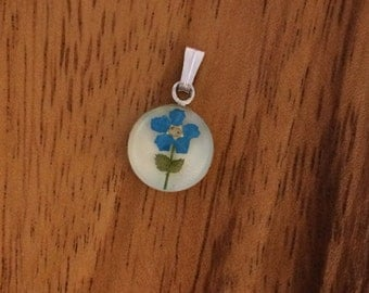 Forget Me Not Pendant - Real flower preserved in resin - small circle - memorial, wildflower, blue, simple, sweet, romantic, Alaska,