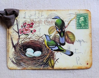Birds With Eggs In Nest Postcard Gift or Scrapbook Tags or Magnet #443