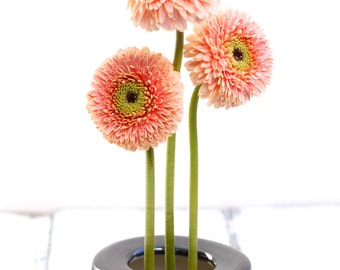 black pin frog vase