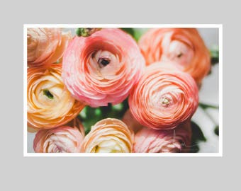 rustic chic ranunculus, pink peach ranunculus print, flower bouquet, romantic bedroom decor, boho chic home decor, desk print, wall art