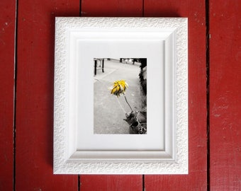 Photograph: Dying Yellow Flower 5x7 print Nature Photography