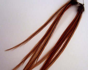 Natural Feather Earrings Brown Badger real