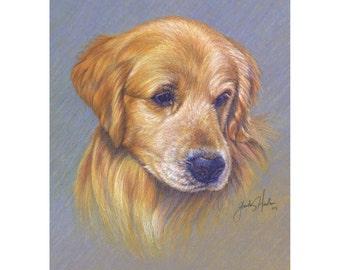 Golden Retriever Dog Fine Art 8x10  Print
