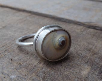Shell ring, spiral, beach shell, statement ring