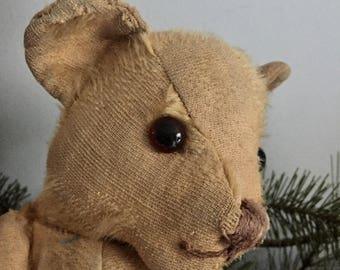 Antique bear, English Teddy Bear, old bear, mohair bear