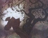 SALE- 1970s Edmund Dulac Print/Color Plate/Book Page/Bookplate From Edmund Dulac's FAIRY BOOK- 2 Sided