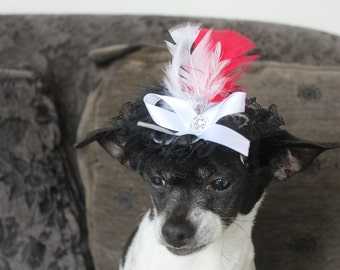 Cute  black color  hat with   feather and  white color bow  for dog or cat